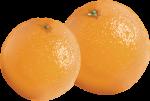 L'Abri en Ville's 2019 Annual Citrus Fundraising Campaign is now underway